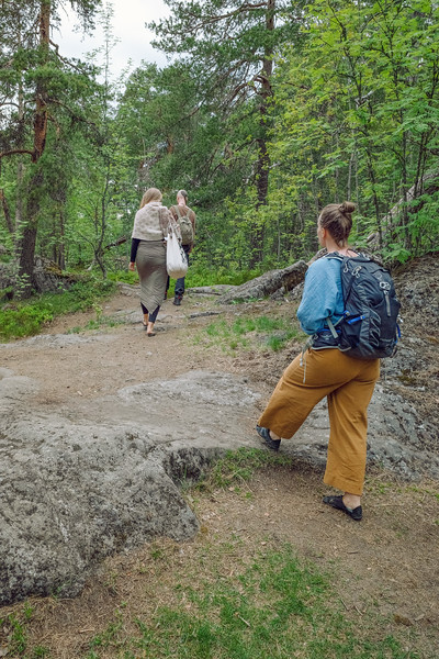 A Group Walking In The Woods