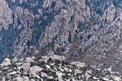 Pinon Trail Hike_2020-001