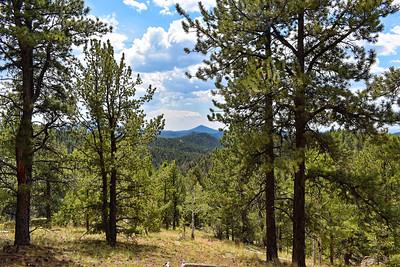 Colorado_2020-002