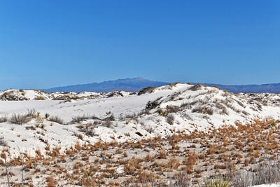 White Sands, NM-003-2021