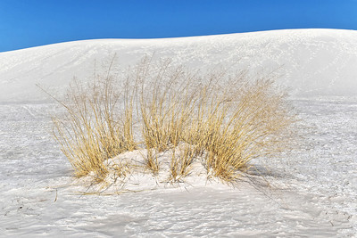 White Sands, NM-011-2021