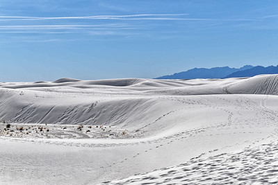 White Sands, NM-026-2021