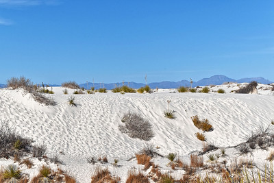 White Sands, NM-004-2021