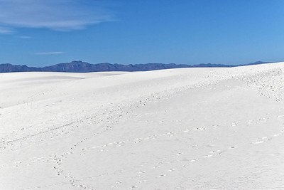 White Sands, NM-023-2021