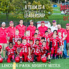 Van Reed Mites vs Lincoln Park Football 10-30-16-4954-Edit-Edit-2-2