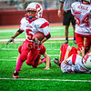 Van Reed Mites vs Lincoln Park Football 10-30-16-4557-Edit-Edit