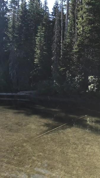 Deer Lake Paddleboarding