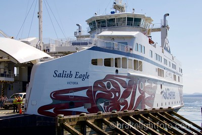 The Salish Eagle in Otter Bay