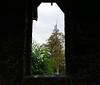 Butter Church  / Old Stone Church window