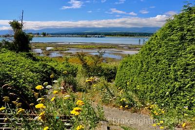 Goose Bay