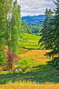 Cowichan Valley