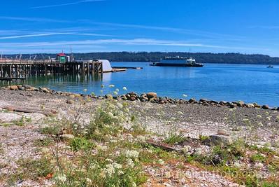 Fanny Bay Wharf
