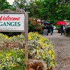 Welcome to Ganges Sign