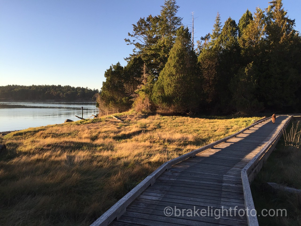 Hiking Trail at Winter Cove