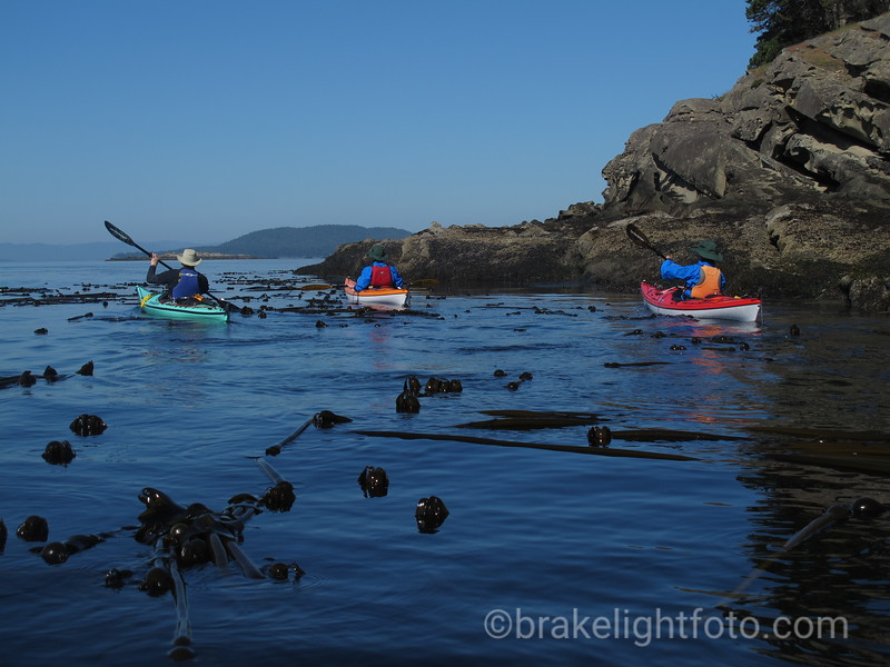 Kayak Saturna Island