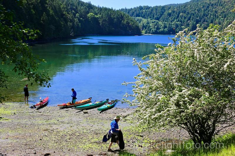 Kayakers at Narvaez Bay