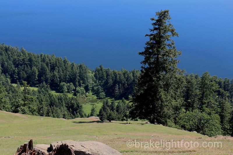 Mount Warburton Pike