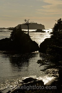 Spring Island, Kyuquot Sound