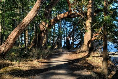 """Newcastle Island Marine Provincial Park - Nanaimo, BC, Canada Visit our blog """"The Story Of Life"""" for the story behind the photo."""