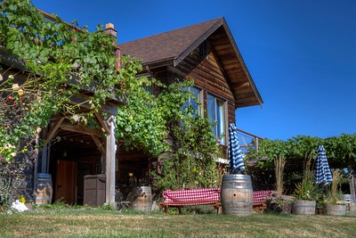 "Blue Grouse Estate Winery - Cowichan Valley, BC, Canada Visit our blog ""Blue Grouse Estate Winery"" for the story behind the photo."