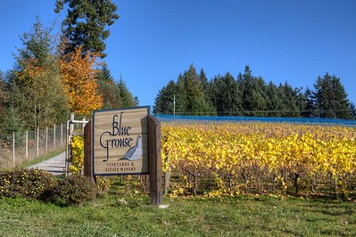 Blue Grouse Estate Winery - Cowichan Valley, BC, Canada