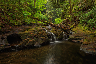 Lower Stocking Creek Falls II