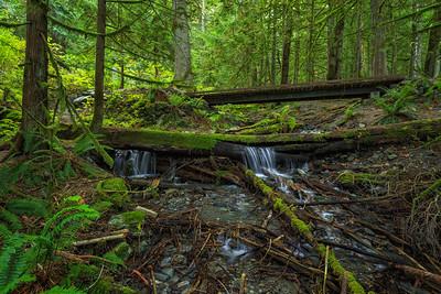 Bridal Creek Crossing