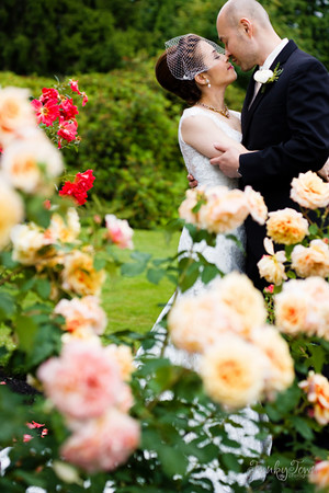 We also did wedding portraits in the rose garden at Stanley Park