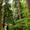 Wedding portrait in the forest at Stanley Park