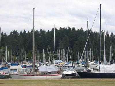 sail_boats_1