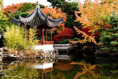 Sun Yat-Sen Garden Vancouver