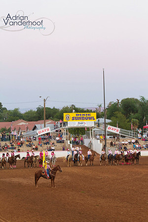 Pink Rodeo 2012