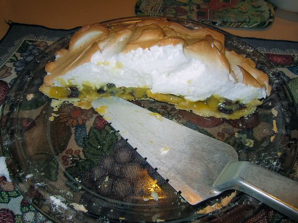 """Home on the Ranch or Farm Begins With Great Foods Like My Special Pie """"Sour Cream Raisin"""" (November 2010)"""