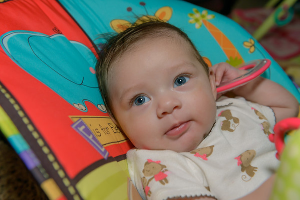 Coral Mila Foster,  4 Months Old, Lubbock TX (May 2013)