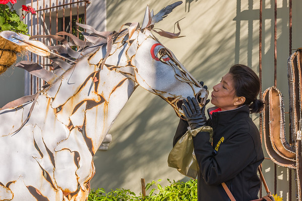 Beatrice Kisses Iron Horse, Scottsdale AZ (3 January 2015)