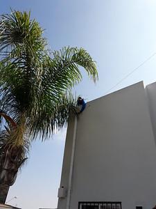 Temp instal of antenna