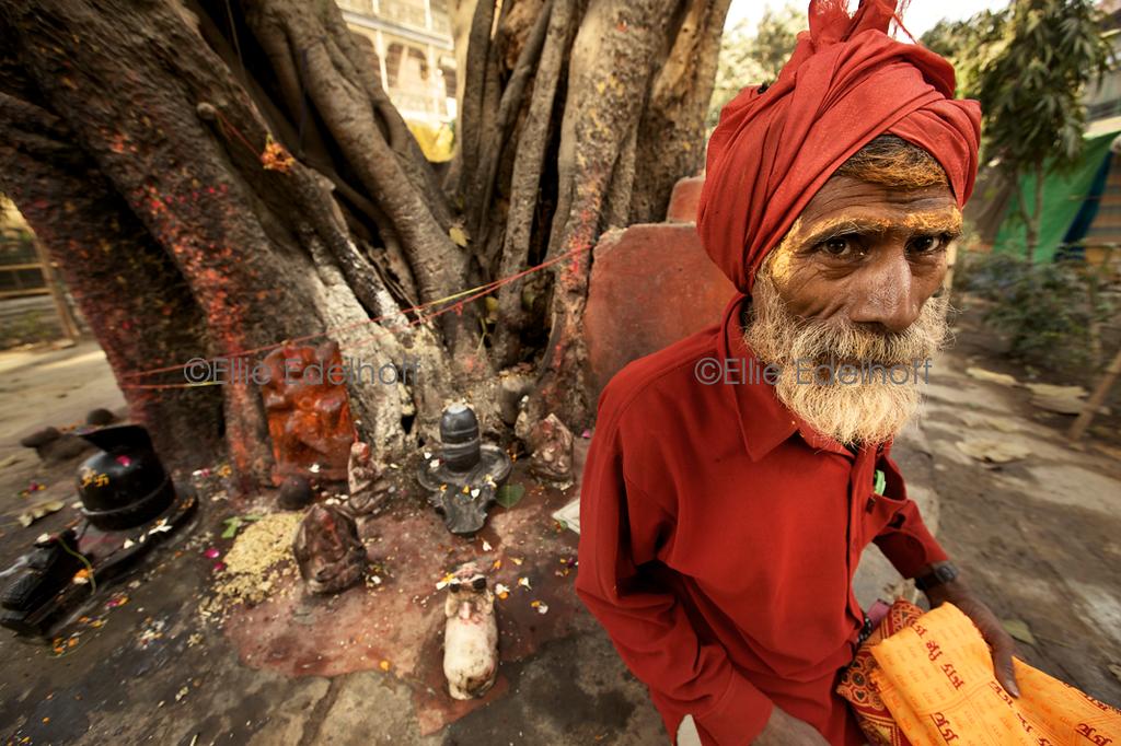 At the Kalpadruma - Varanasi, India