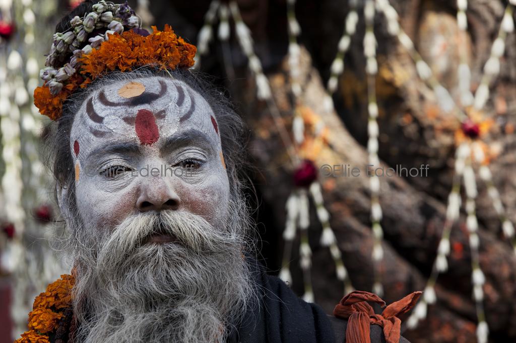 Baba at the Wishing Tree - Varanasi, India