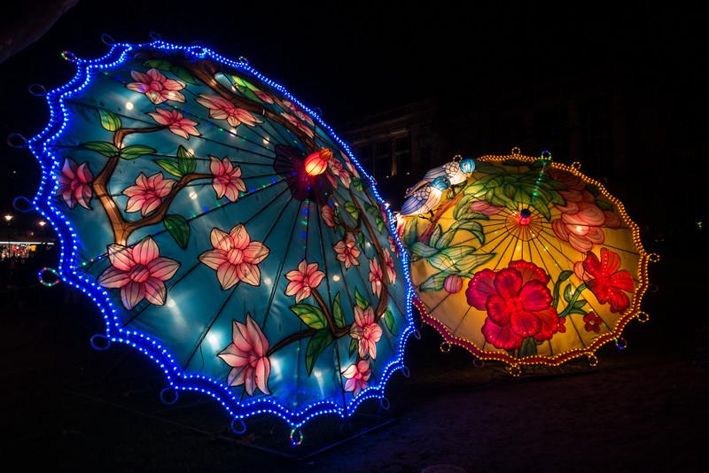 China light Zoo Antwerpen 2016.