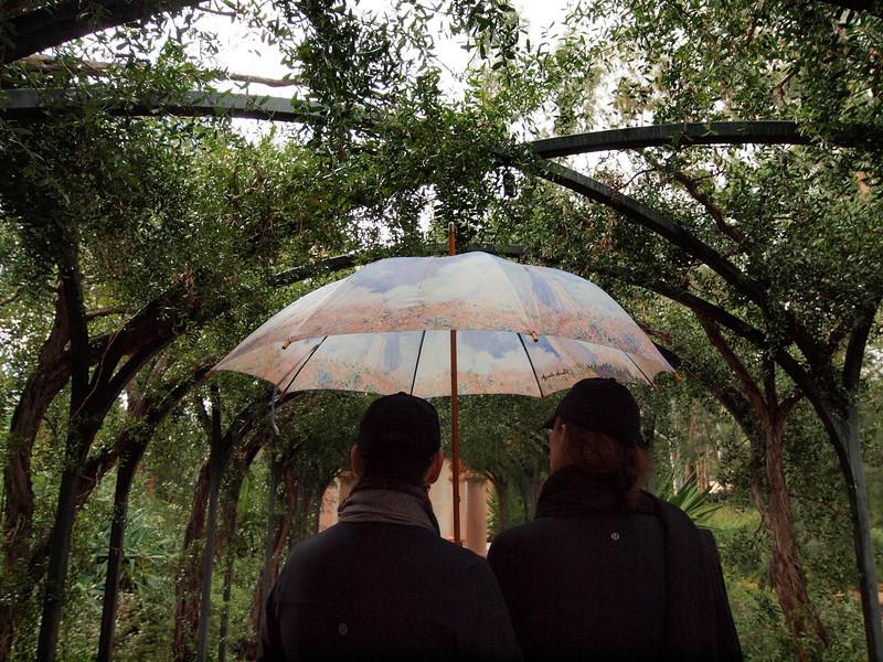 Umbrella In Ganna's Garden