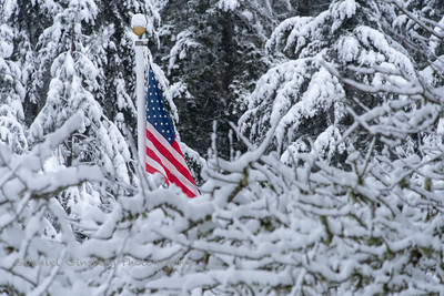 An American flag's bright colors stand out against a snowy background of trees.
