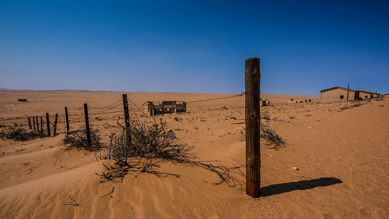 Fence in the Desert