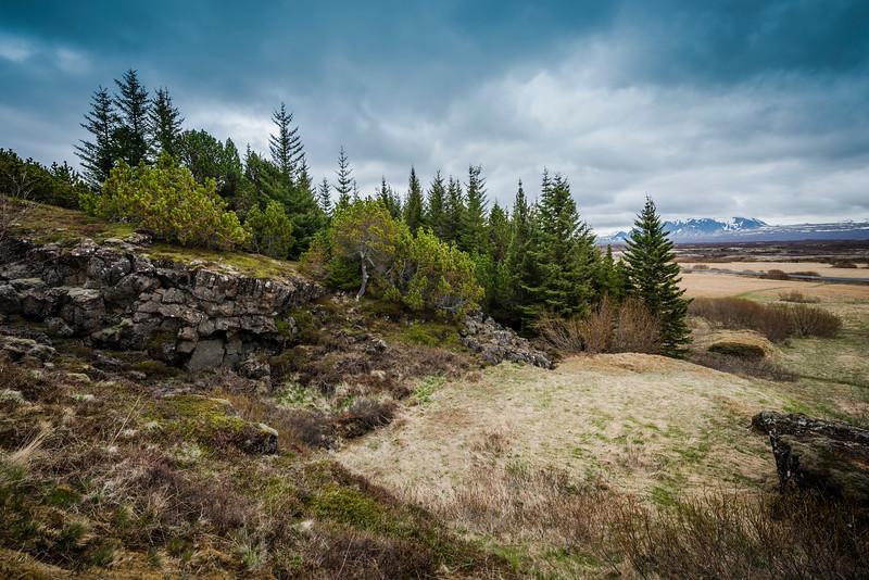 Icelandic Vista