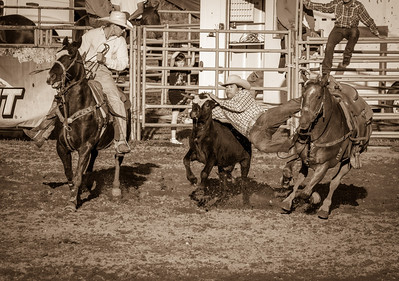 Millarville Rodeo action - August 2012