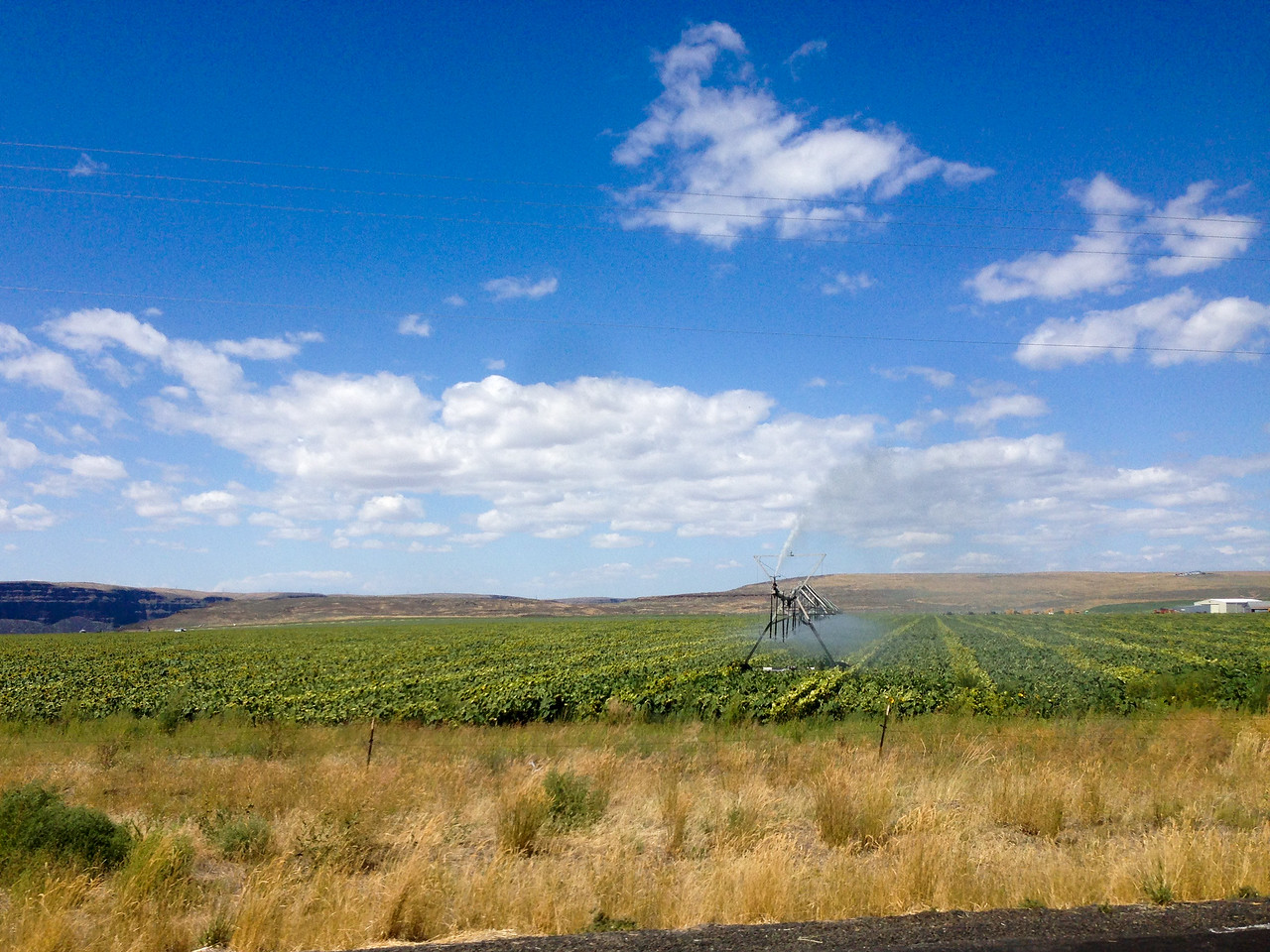 Lincoln County, WA Crop Irrigation