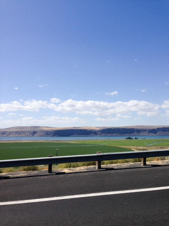 Coulee City, WA (Banks Lake) Alfafa Field