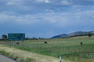 Horses, I-15 Southern Utah