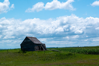 North Dakota Old Settlers Homestead