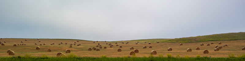 Western North Dakota  Round Hay Bales