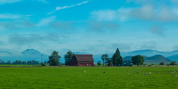 Oregon Farm Morning